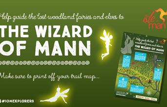The Wizard of Mann