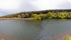 Ballure reservoir, looking towards the dam