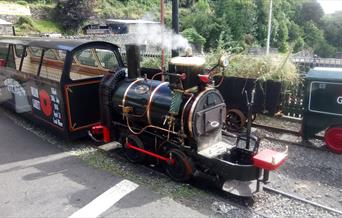 The Great Laxey Mine Railway