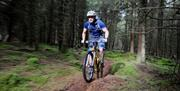 Mountain Biker riding in the plantation