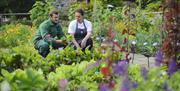 Kitchen and Garden working together at Milntown