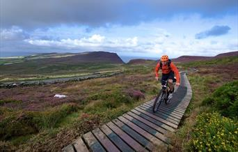 Mountain Biking on the countryside boardwalk