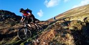 Mountain bikers decending the hills