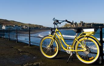 Pedego Yellow Peel Castle