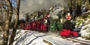 Sea Lion and Annie during snow filled Santa Trains
