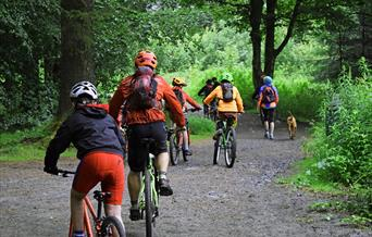 South Barrule Mountain Bike Trails